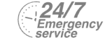 24/7 Emergency Service Pest Control in Yeading, UB4. Call Now! 020 8166 9746