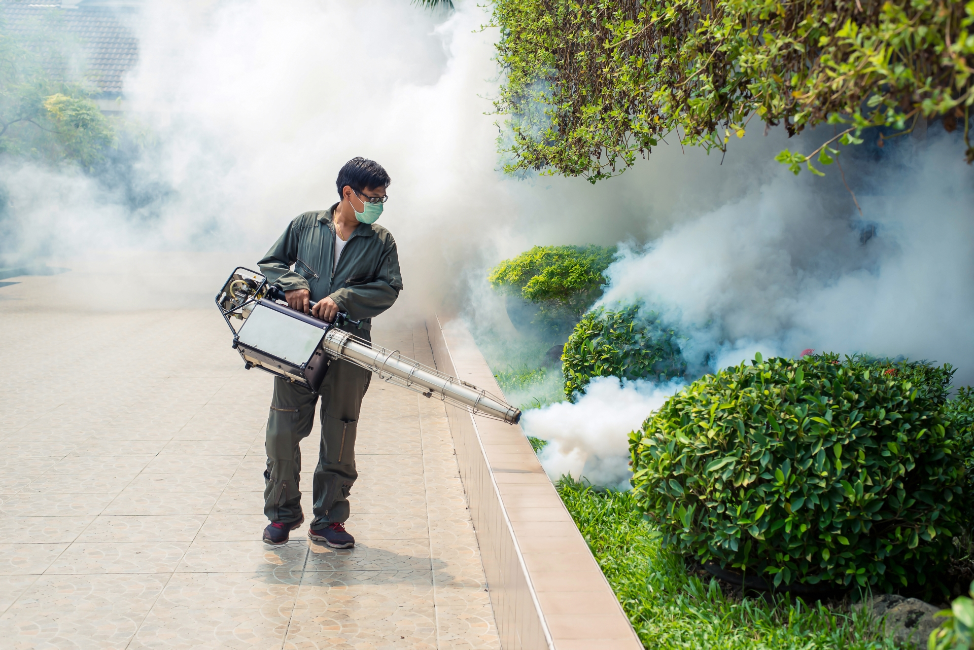 Bug Control, Pest Control in Yeading, UB4. Call Now 020 8166 9746